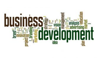 effective business development strategies