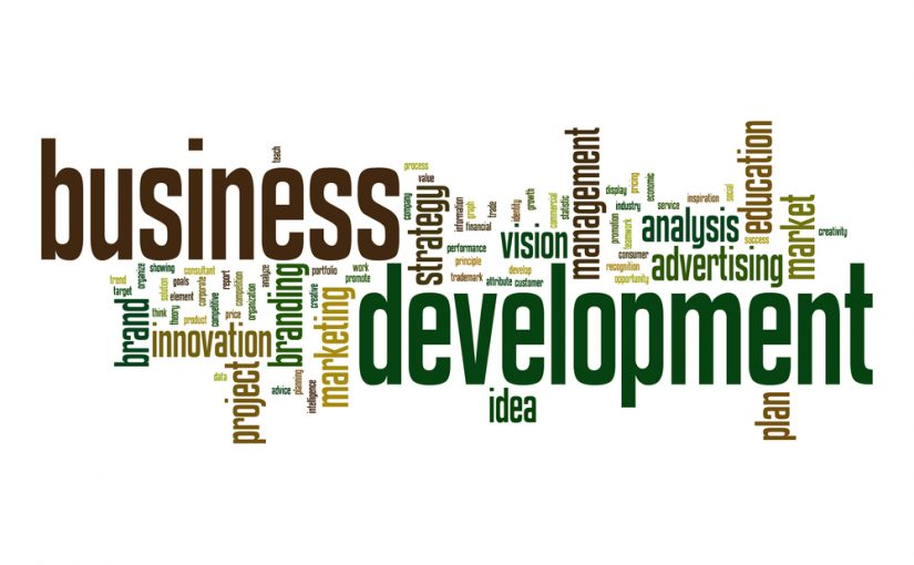 Need Effective Business Development Strategies? Ask Your Buyers